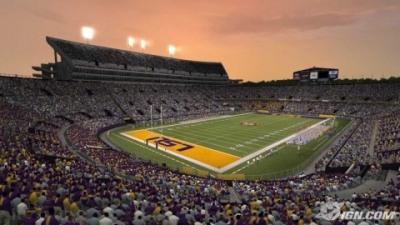 Picture of Tiger Stadium